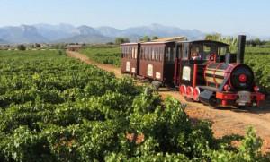 Mallorca Weinexpress